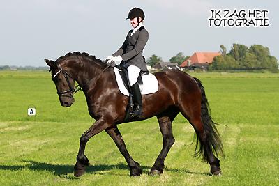 Heamiel Concours Bolsward, 29-06-2012