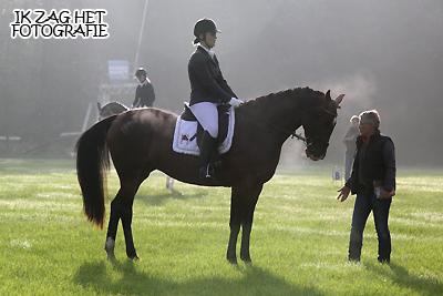 Kringwedstrijd Paarden & Friese Kampioenschappen Pony's te Harich