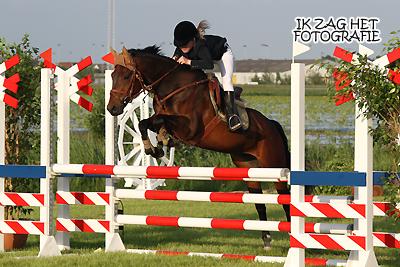 Concours Hippique Sneek, 06-06-2012